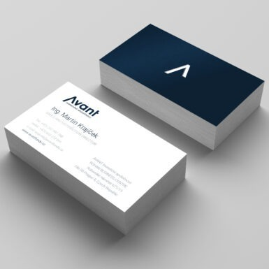 AVANT investiční společnost